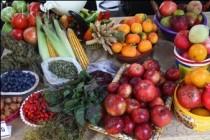 Հունվարի 1-ից ՌԴ-ն կփակի իր շուկան Վրաստանից ու Ադրբեջանից միրգ-բանջարեղենի առջև