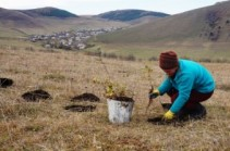 Nearly 230,000 Trees Make 2015 a Green One for ATP and Communities throughout Armenia and Artsakh