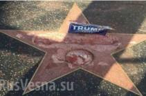 Звезду Трампа на Аллее славы в Голливуде разбили