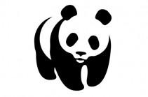 WWF: за последние 40 лет в мире стало на 60% меньше животных