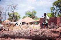 Власти Южного Судана объявили о голоде в некоторых районах страны