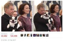 Улыбчивая собака президента Финляндии покорила интернет