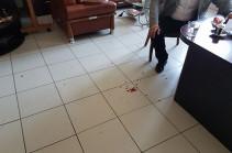 Հարձակման են ենթարկվել փաստաբաններ Տիգրան Աթանեսյանն ու Արմեն Սողոմոնյանը (Լուսանկար)
