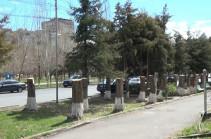 Դավթաշենում ծառեր հատելու համար կալանավորված Սամսոնյանն ազատ է արձակվել