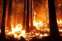 ԱՄՆ Յուտա նահանգում անտառային հրդեհների հետևանքով տարհանվել է ավելի քան 1000 մարդ