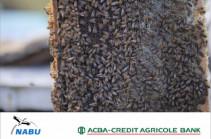 ԱԿԲԱ-ԿՐԵԴԻՏ ԱԳՐԻԿՈԼ Բանկը սկսել է իրականացնել «Օրգանական գյուղատնտեսության զարգացման» երրորդ անվճար ծրագիրը