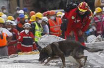 Число жертв землетрясения в Мексике достигло 293 человек