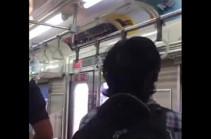 Գնացքի ուղևորը սատկացրել է վագոն սողոսկած օձին (Տեսանյութ)