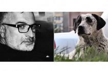 Սցենարիստ Հարություն Ղուկասյանը պատրաստվում է ֆիլմ նկարել «Իմ քայլը» շարժման մասնակից Քայլո շան մասին. մանրամասնում է սցենարիստը