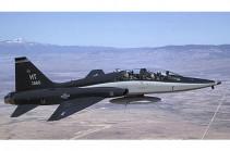 ԱՄՆ ՌՕՈՒ ինքնաթիռ է կործանվել