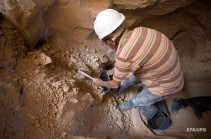 В Египте нашли восемь миллионов мумий собак