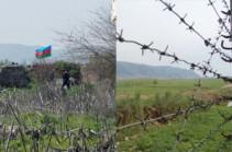 Гюннут и Джоджуг Марджанлы - пропагандистский лимон или затычка дырявого имиджа Алиева?