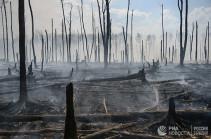 Ինդոնեզիայում զինծառայողներին թույլատրվել է առանց զգուշացման կրակ բացել անտառները հրդեհող քաղաքացիների վրա