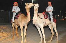 Полиция Абу-Даби будет патрулировать улицы на верблюдах