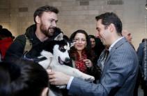 Երևանը դադարեցնում է կենդանիների սպանդի ամոթալի պրակտիկան. Հայկ Մարության