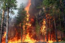 Չինաստանում անտառային հրդեհների հետևանքով ավելի քան 10 հազար մարդ է տարհանվել