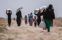 В Сирию за сутки вернулись более 800 беженцев