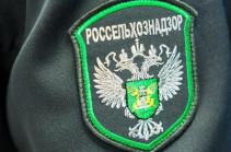 «Ռոսսելխոզնադզոռն» ուժեղացրել է Հայաստանից ձկան մատակարարման վերահսկողությունը