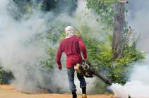 На Филиппинах объявили тревогу из-за вспышки лихорадки денге