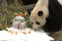 Торт для панды (Видео)
