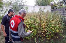 Հայկական Կարմիր խաչի ընկերությունը մարդասիրական օգնություն կտրամադրի Շիրակի մարզի կարկուտից առավել տուժած ընտանիքներին