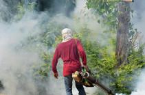 На Филиппинах более 188 тысяч человек заразились лихорадкой денге