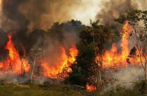 Հրդեհների տեսանկյունից այս տարին մեր մոլորակի համար շատ վատն էր. այրվում է Ամազոնը (Լուսանկարներ)