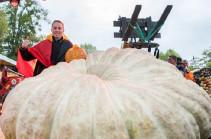 Овощной рекорд: в Германии выбрали самую большую тыкву (Видео)