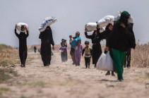 Մեկ օրում Սիրիա է վերադարձել 946 փախստական