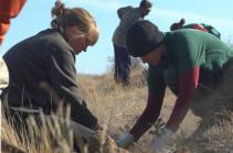 ՎիվաՍել-ՄՏՍ-ն աջակցել է Գնիշիկում մեկնարկած բնապահպանական ծրագրի հերթական փուլին