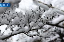 Դեկտեմբերը կլինի սովորականից տաք, տեղումների քանակը՝  նորմայից ավելի. Գագիկ Սուրենյան
