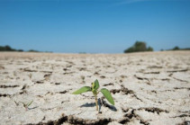 Climate change: Last decade 'almost certainly' warmest