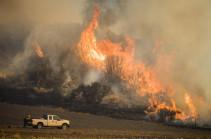 Лесные пожары уничтожили на востоке Австралии свыше 680 жилых домов