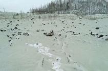 Жителей Челябинска испугал зеленый снег
