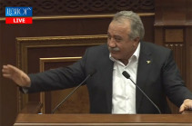 If people decide that we are wrong, we will leave: Sasun Mikayelyan on referendum
