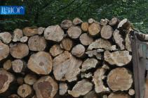 Տավուշում 2019թ. ընթացքում ապօրինի անտառահատումների և դրանց հետ կապված պաշտոնական հանցագործություններով 3.8 անգամ ավելացել է պետությանը պատճառված վնասի վերականգնման ցուցանիշը
