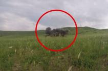 Արցախի բանակում փորձարկվել է հարվածային անօդաչու թռչող սարք (Տեսանյութ)
