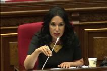 По такой же логике парламент может проголосовать и отменить июнь или Новый год – Наира Зограбян об отмене референдума