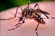 В Лаосе число заразившихся лихорадкой денге превысило 2,6 тысячи