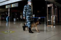 Մարդկանց մոտ COVID-19 հայտնաբերելու համար ԱՄԷ-ում օգտագործում են շներին