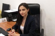 У официального Еревана нет реальной повестки и программы действий в работах с Диаспорой