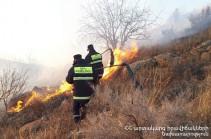 Սյունիք գյուղի մոտակայքում այրվել է խոտածածկ տարածք․ հրդեհաշիջմանը մասնակցել է 39 փրկարար