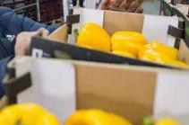 «Ռոսսելխոզնադզորը» կարող է արգելել Ադրբեջանից բանջարեղենի մատակարարումը