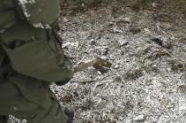 Саперы российских миротворческих сил в Нагорном Карабахе проводят разминирование северной окраины Степанакерта в сложных метеоусловиях