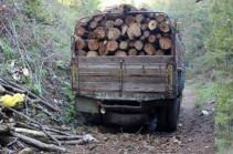 Անտառապահին մեղադրանք է առաջադրվել 5մլն 790 հազար դրամ կաշառք ստանալու համար. գործը դատարանում է