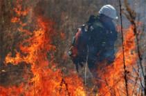 В Аризоне в ходе тушения лесных пожаров погибли двое спасателей