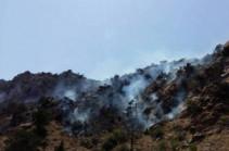 Հրդեհ՝ «Արևիկ» ազգային պարկի տարածքում, այրվել է մոտ 30 հա բուսածածկույթ (Տեսանյութ)