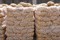 Мы побили рекорд: большие объемы экспорта картофеля привели к росту цен на местном рынке – Ваан Керобян