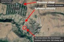Սյունիքի Կոռնիձոր գյուղի հարակից տարածքից ադրբեջանցի զինծառայողները հափշտակել են բնակչին պատկանող 107 ոչխար և 5 այծ․ ՄԻՊ ահազանգը