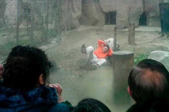 Indian white tiger kills student at Delhi zoo